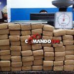 Polícia Militar apreende duas pessoas com 65 quilos de Maconha