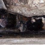 Três corpos são encontrados carbonizados dentro de veículo em Camaçarí