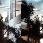 VÍDEO: Flagrante de casal fazendo sexo ORAL em shopping daqui