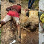 Cinco homens foram assassinados nesta tarde de quinta-feira (28).