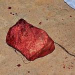 Menino pega casal fazendo amor na casa dele em Lauro de Freitas e mata mulher a pedradas