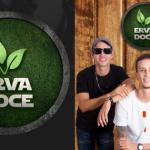 Exclusivo: músicas da banda ERVADOCE tocadas em todo o Brasil e até na Europa! Confira