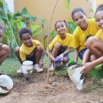 Crianças e idosos atendidos pela LBV participam de atividades ecológicas