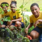 Em comemoração ao Dia da Árvore, crianças da LBV participam de ação ambiental