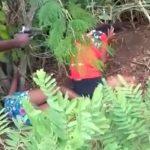 Mãe e filha de 11 anos são assassinadas por facção no Ceará