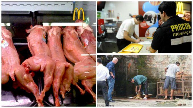 Polícia Federal comprovou que o McDonald´s usa carne de cachorro