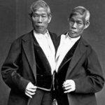 Os irmãos siameses que tiveram 21 filhos! A história de Chang e Eng