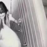 Imagens mostram blogueira sendo levada para MATADOURO antes de estupro