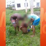 Lauro de Freitas: Máscara é assassinado a facadas em Itinga