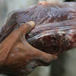 carne de baleia