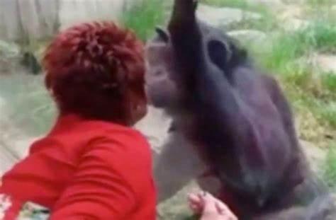 Mulher é proibida de entrar em zoológico